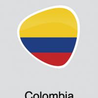 formato-banderas-Colombia